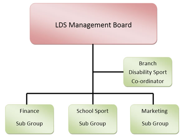 An image of the LDS Committee Structure - the management board oversees the coordinator as well as three sub-groups
